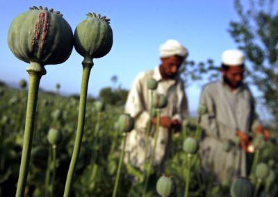 La falsa guerra de Estados Unidos en Afganistán