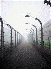 Otra visión del Holocausto, por Roberto Bardini