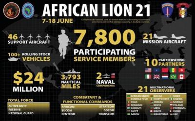 Der afrikanische Löwe jagt neue Beuten